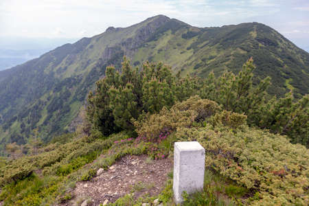 Old border pillar in the mountains on a mountain range among bushes and rocks