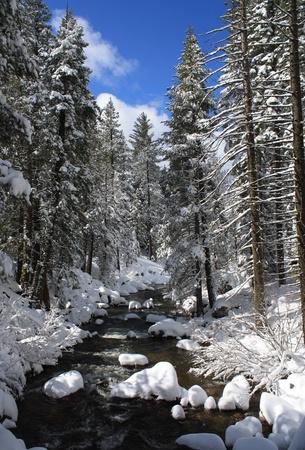 山の川の冬の風景