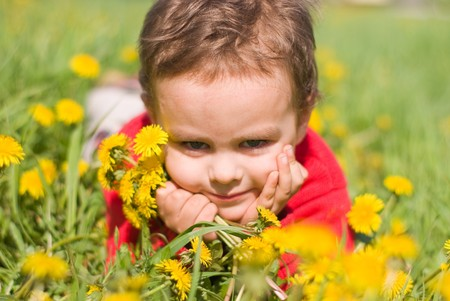 Pleased with the boy with a bouquet of dandelions Stock Photo