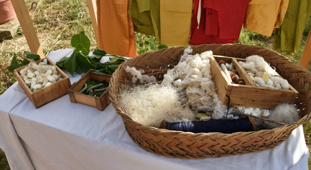 silkworms and their product