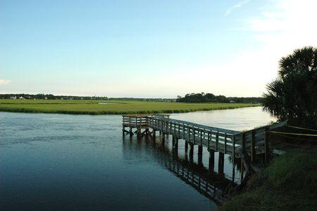 Salt Marsh photo