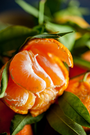 A close-up of a fresh peeled juicy clementine with green leaves on a top of while clementines