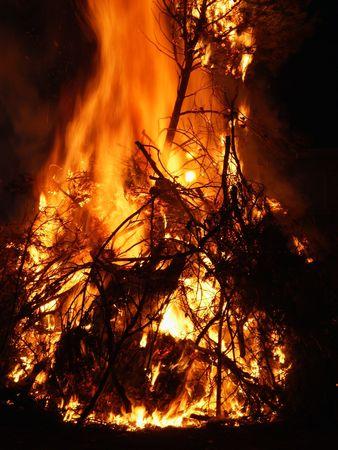 smoldering: Tree on fire