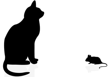 house mouse: Cat and mouse