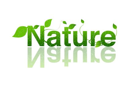 shield logo: Nature word with leaves and water drops Stock Photo