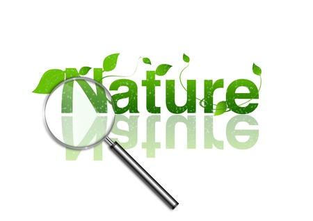 vigilance: Focus on nature