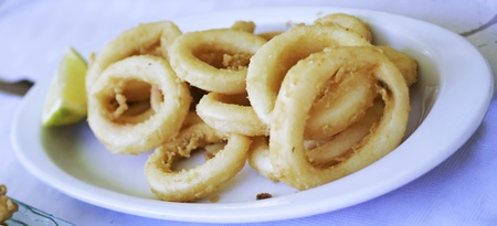 fried squid (spanis typical cover)