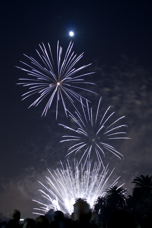 Independence Day Fire Works photo