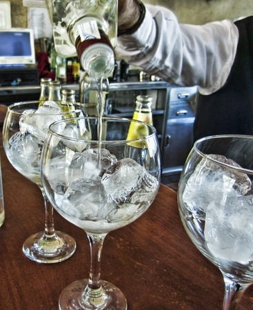 gin and tonic Imagens