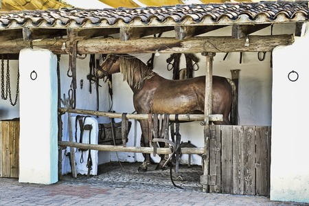 horse stable: In an old horse stable spanish