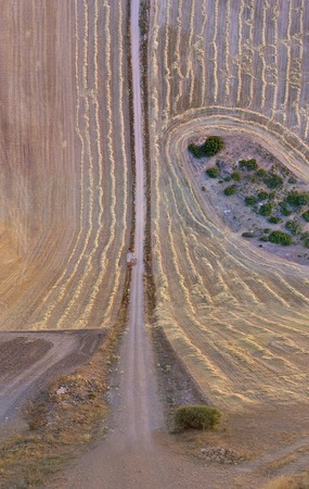 Aerial view of a wheat field recently harvested in Albacete, Spain (Flat land Effect)
