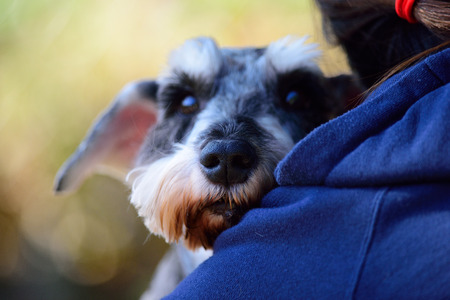 Rear view of a young woman hug her dog Stock Photo