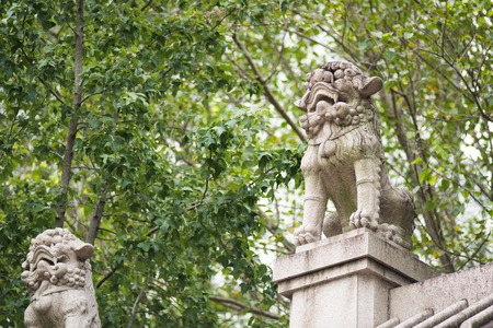 lions On Chinese temple roof under tree