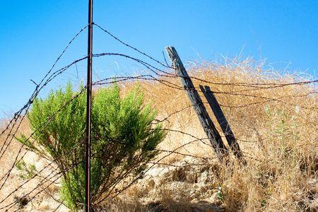 enclosing: Un colpo orizzontale di filo spinato che racchiude un pennello di macchia nella California meridionale calore estivo.