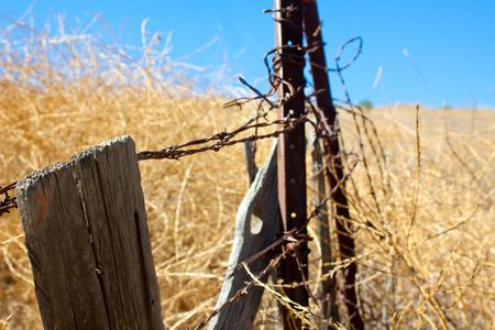 A horizontal close-up shot of rusty barbed wire and rotting wooden fence posts in a dry summer field in southern California. photo