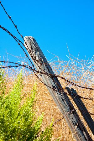A vertical close-up shot of rusty barbed wire and tilting rotting wooden fence posts in a dry summer field in southern California. photo