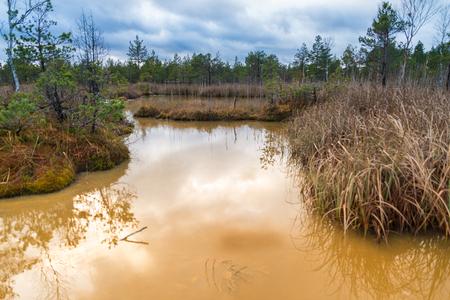 Landscape, Sulfur isotopic bog