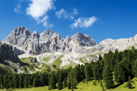 Cresta de Davoi, panoramic view from Vajolet Valley, Dolomite - Italy