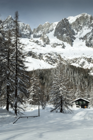 mountain chalet in the snow among the trees, Val Ferret - Italy photo