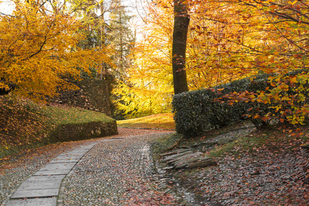 orta: autumn colors in the park Sacred Mount of Orta, Piedmont Stock Photo
