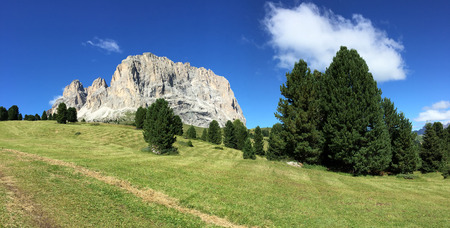 Paesaggi delle Dolomiti in una giornata di sole estivo con prato e alberi, Italia