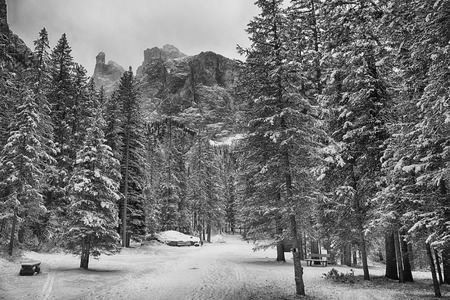 Foresta tra i villaggi di Corvara e Colfosco nella stagione invernale con Gruppo del Sella in background Archivio Fotografico