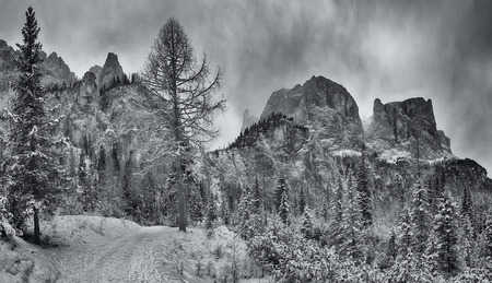 Mountain path through the forest with peak of Sella Group in the background, Alta Badia - Dolomiti Archivio Fotografico