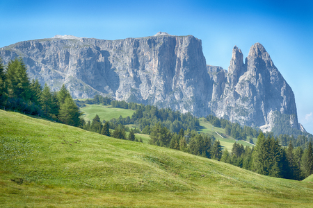 beautiful view oh the Seiser Alm in the summer season with meadow in foreground, Dolomites