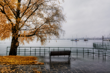 the Lake Maggiore overflows in autumn season with bench and tree in foreground and foggy skyline of Arona in background Standard-Bild