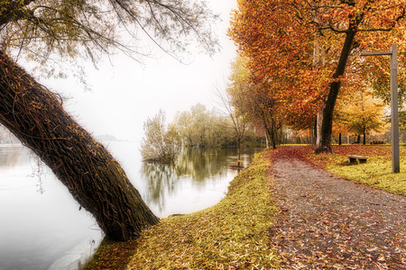 River Ticino in a foggy landscape with colored trees on the right in autumn season, Sesto Calende - Varese