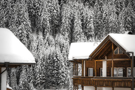 two snowy roofs of houses and pine forest in the background on a cold winter day in the mountains