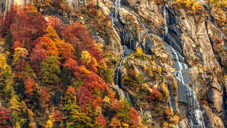 Waterfall and forest in autumn season in the mountains