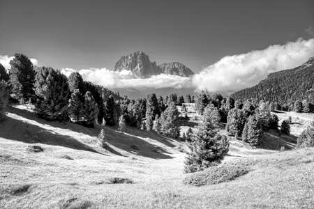 surreal infrared panorama of Val Gardena during the summer season Standard-Bild