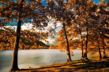 Autumn colors in the wood with lake of Ghirla near city of Varese, long time exposure