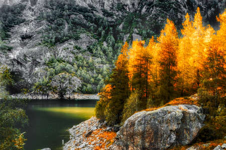 Ray of lights over the trees, Antrona lake - Piedmont, Italy