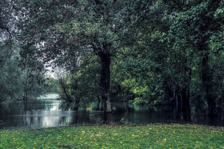 the Ticino river in the woods during the flood in the spring season