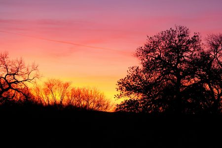 Brilliant colors of a New Mexico sunset with tree silhouettes Imagens