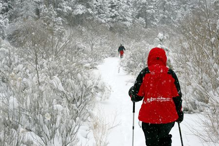 Snowshoeing up the trail