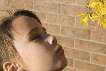 smells: Little Girl Smells Spring Flowers