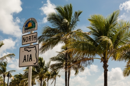 trafic: A Road Sign of Florida Scenic Highway with Palm Trees on a background