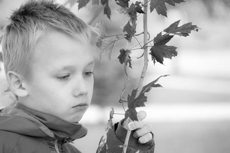 m�lancolie: Boy avec l'expression de tristesse et de m�lancolie tient une branche avec des feuilles d'�rable rouge