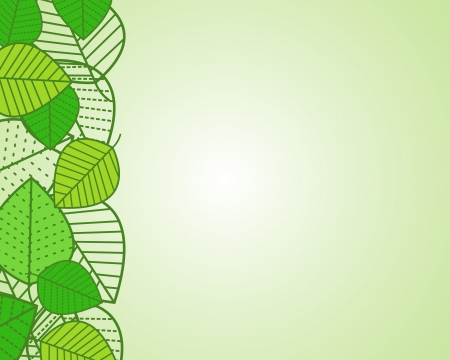 green leaves. green leaves concept. Vector