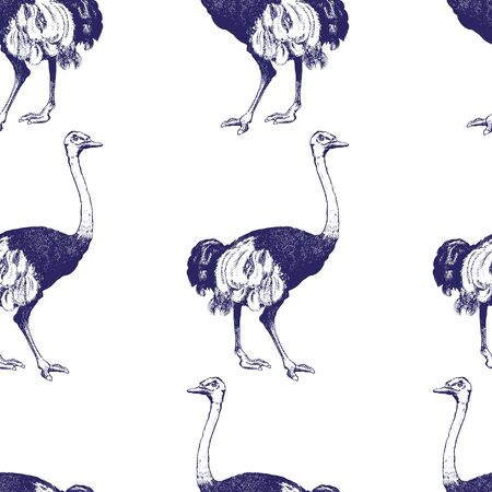 Vintage engraving style ostrich seamless pattern on white background. Great for fabrics, phone case paper, gift packaging, textiles, interior design, cover.