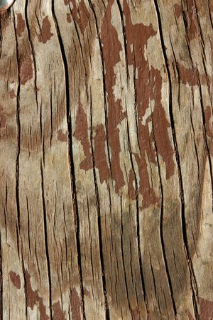 dilsiz: Close up on Wooden Table