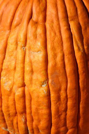 dilsiz: Close up on a Pumpkin Texture
