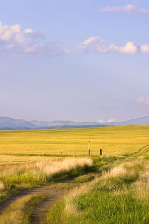 Field in Helena Montana - Path leading to a Field with Blue Skies on the Background Stock Photo - 466299