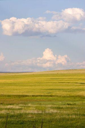 Farming Field in Helena Montana Stock Photo - 466300