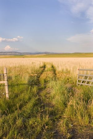 Open Gate to a Field with Clear Skies and a Small Shed in Helena Montana Stock Photo - 466289
