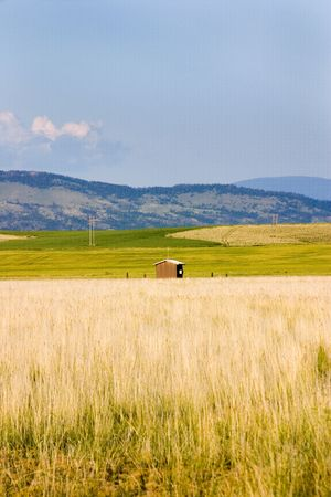 Field in Helena Montana with bushes and Mountains on the Background Stock Photo - 466314