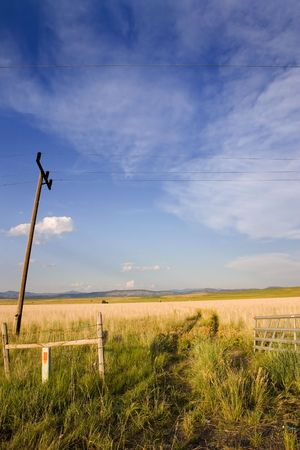 Gate to a Field with Electric Poles in Helena Montana Stock Photo - 510335